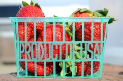 """Fresh strawberries in a green plastic basket market """"Product of USA"""" in California, USA. Closeup of fresh strawberries in a green plastic basket stock image"""