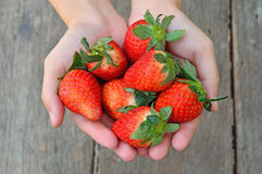 Fresh strawberries in the hands on a wood backgrou. Woman showing red strawberry on hands Stock Images