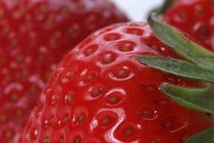Fresh strawberries. Image of freshly harvested strawberries Stock Image