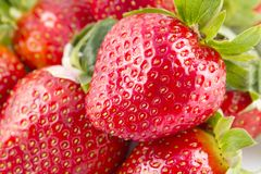 Fresh Strawberries isolated Royalty Free Stock Photography