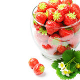 Fresh strawberries isolated over white Stock Photo