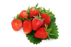Fresh strawberries with leaves Royalty Free Stock Photography