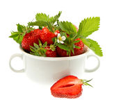 Fresh strawberries with leaves and flowers Stock Image