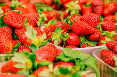 Fresh strawberries. At the market royalty free stock photography