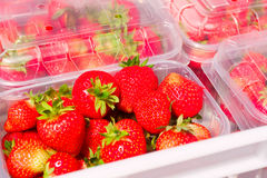Fresh Strawberries on Market Stall. Boxes of freshly picked summer strawberries displayed at market fruit stand Royalty Free Stock Images
