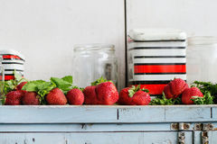 Fresh strawberries and melissa herbs Royalty Free Stock Images