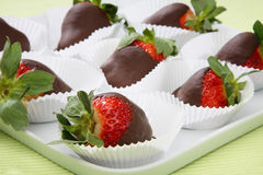 Fresh strawberries in melted chocolate royalty free stock photo