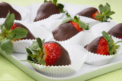 Fresh strawberries in melted chocolate stock photography