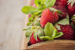Fresh strawberries with mint Stock Images