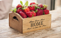 Fresh strawberries with mint Royalty Free Stock Images