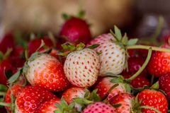 Fresh strawberries on old table wood. Royalty Free Stock Image