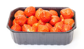 Fresh Strawberries in a Plastic Container Royalty Free Stock Image