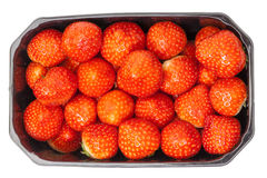 Fresh Strawberries in a Plastic Container Stock Photography
