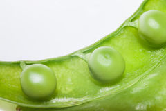 Green peas, close-up on a white background, plate.  Royalty Free Stock Photos