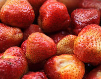 Fresh strawberries, red berries. Group of berries. Stock Images