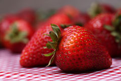 Fresh Strawberries on Red Gingham Tablecloth Close Up Royalty Free Stock Images