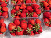 Fresh strawberries for sale Stock Photos