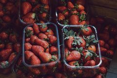 Fresh strawberries on sale, portioned in plastic boxes stock image