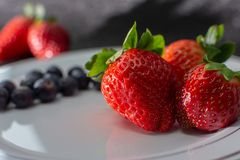 FRESH STRAWBERRIES AND SANDWICHES CUT IN WHITE PLATE ON BLACK BACKGROUND royalty free stock photo