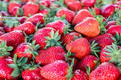 Fresh strawberries from Serbia stock image