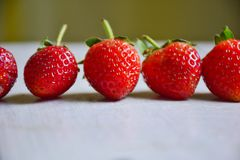 Fresh strawberries. Fresh strawberries set in row Royalty Free Stock Image