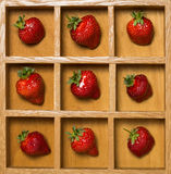 Fresh strawberries in shadow box Stock Photography