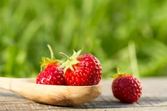 fresh strawberries in spoon on wooden background, close up Royalty Free Stock Images