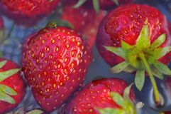 Fresh strawberries in water Royalty Free Stock Photography