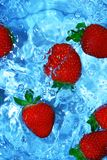 Fresh strawberries in water. Juicy strawberries being rinsed in water royalty free stock photos