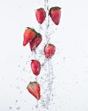 Fresh strawberries with water splash Royalty Free Stock Image