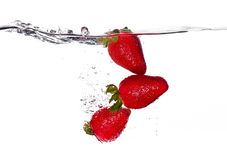 Fresh Strawberries in Water  on White Background Stock Photo