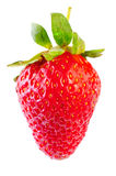 Fresh strawberries were placed Royalty Free Stock Photography