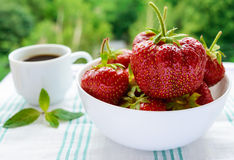 Fresh strawberries in a white bowl and a cup of coffee on the background of nature. Stock Photography