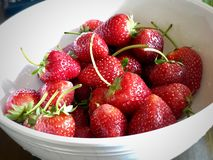 A white bowl of fresh strawberries royalty free stock photo