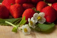 Fresh strawberries with white flowers. Fresh red strawberries with leaves and flowers Stock Photos
