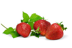 Fresh strawberries on white. Three strawberries isolated on white background stock images