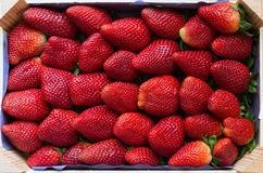 Fresh strawberries in wood box, view from above Stock Image