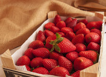 Fresh strawberries in a wooden box. Fresh strawberries in a  box Stock Photography
