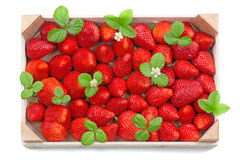 Fresh strawberries in wooden box Royalty Free Stock Images
