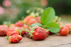 Fresh strawberries on wooden table Stock Images