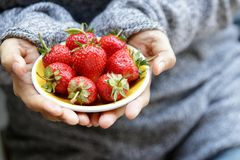 Fresh strawberries on a yellow plate in woman`s hands. Selectiv stock photography