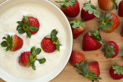 Fresh strawberries and yogurt Royalty Free Stock Photography