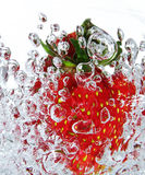 Fresh strawberry. A fresh strawberry in water bubbles Royalty Free Stock Photography