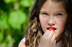 Free Fresh Strawberry Royalty Free Stock Photos - 24896148