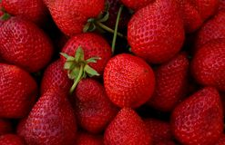 Fresh strawberry background royalty free stock images