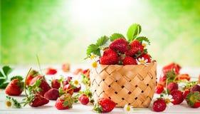 Fresh strawberry stock photography