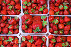 Fresh strawberry in baskets on the market. Royalty Free Stock Photo