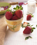 Fresh strawberry berries in a decorative pail. Strawberry berries in a decorative pail Royalty Free Stock Image