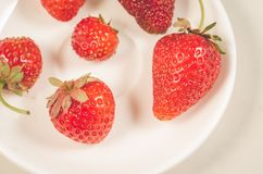 fresh strawberry berries in a white bowl/fresh strawberry berries in a white bowl closeup. Top view stock photography