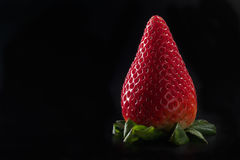 Fresh strawberry on black background Stock Photo
